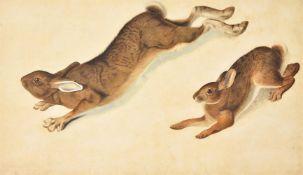 After John James Audubon- two modern hand coloured prints