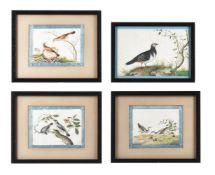 Eight various Chinese School paintings