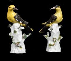 A pair of Meissen-style figures of Golden Orioles