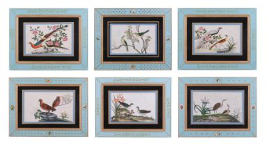 Six Chinese paintings of birds