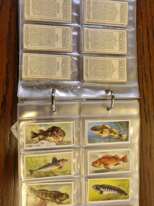 10 tea card sets, various subjects to include speed, dogs, footballers, modern naval craft, - Image 2 of 5