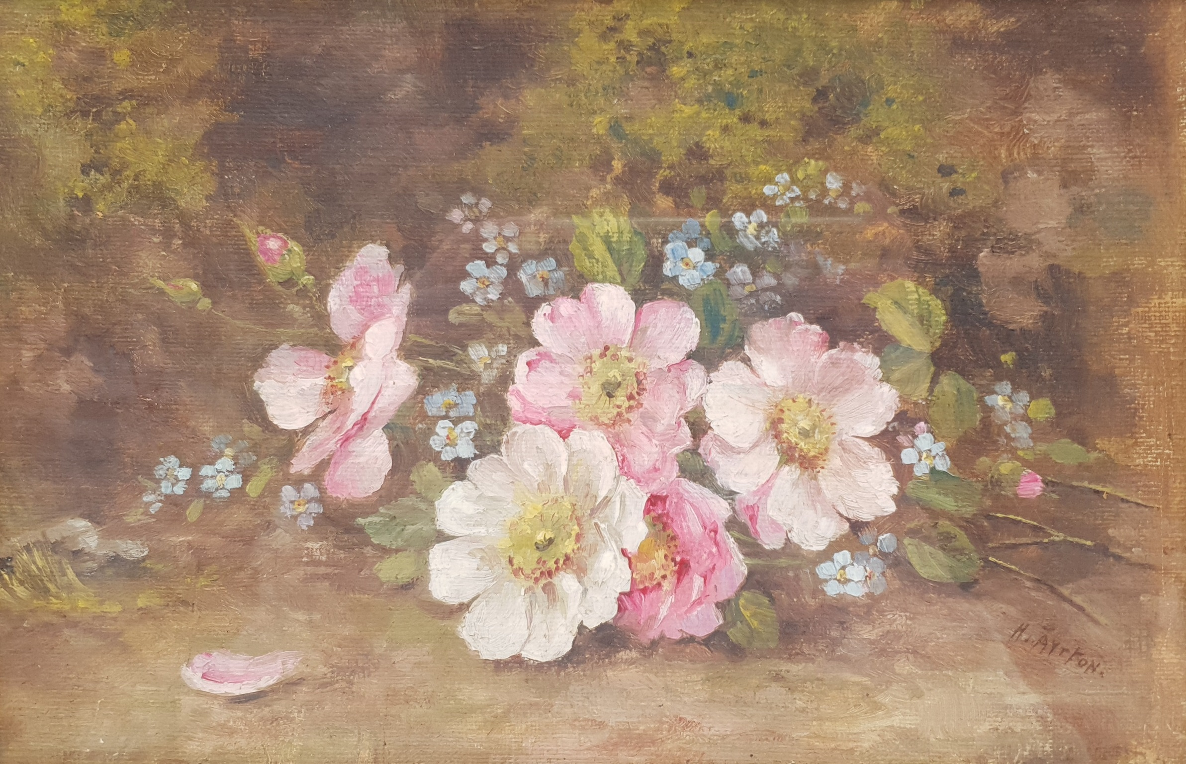 Harry Ayrton (British 1905-1976): Study of Flowers, oil on board signed 18cm x 28cm Notes: Ayrton