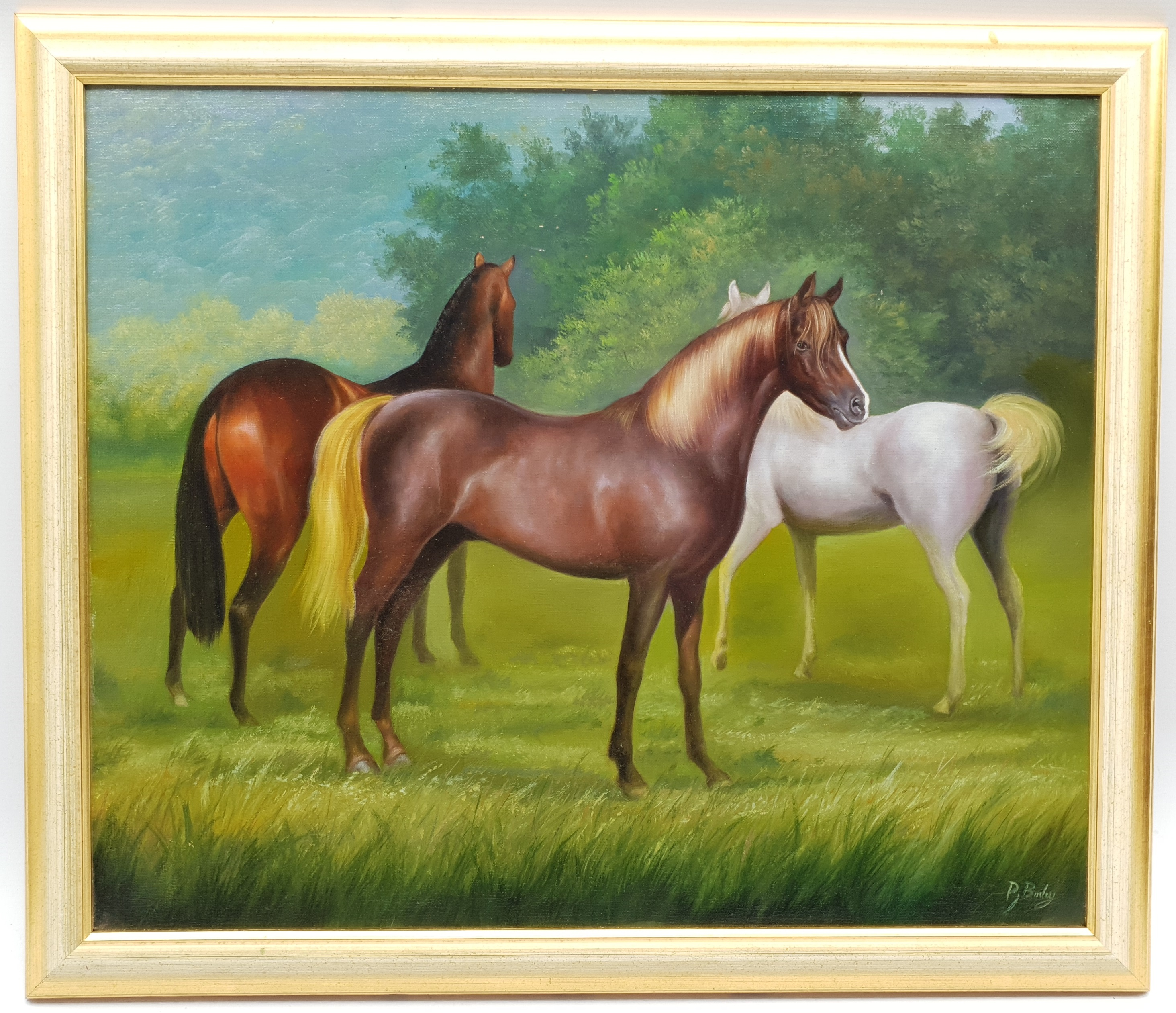 Peter J Bailey (British 1951-): 'Malvern Arabians', oil on canvas signed, titled signed and dated '0 - Image 2 of 4