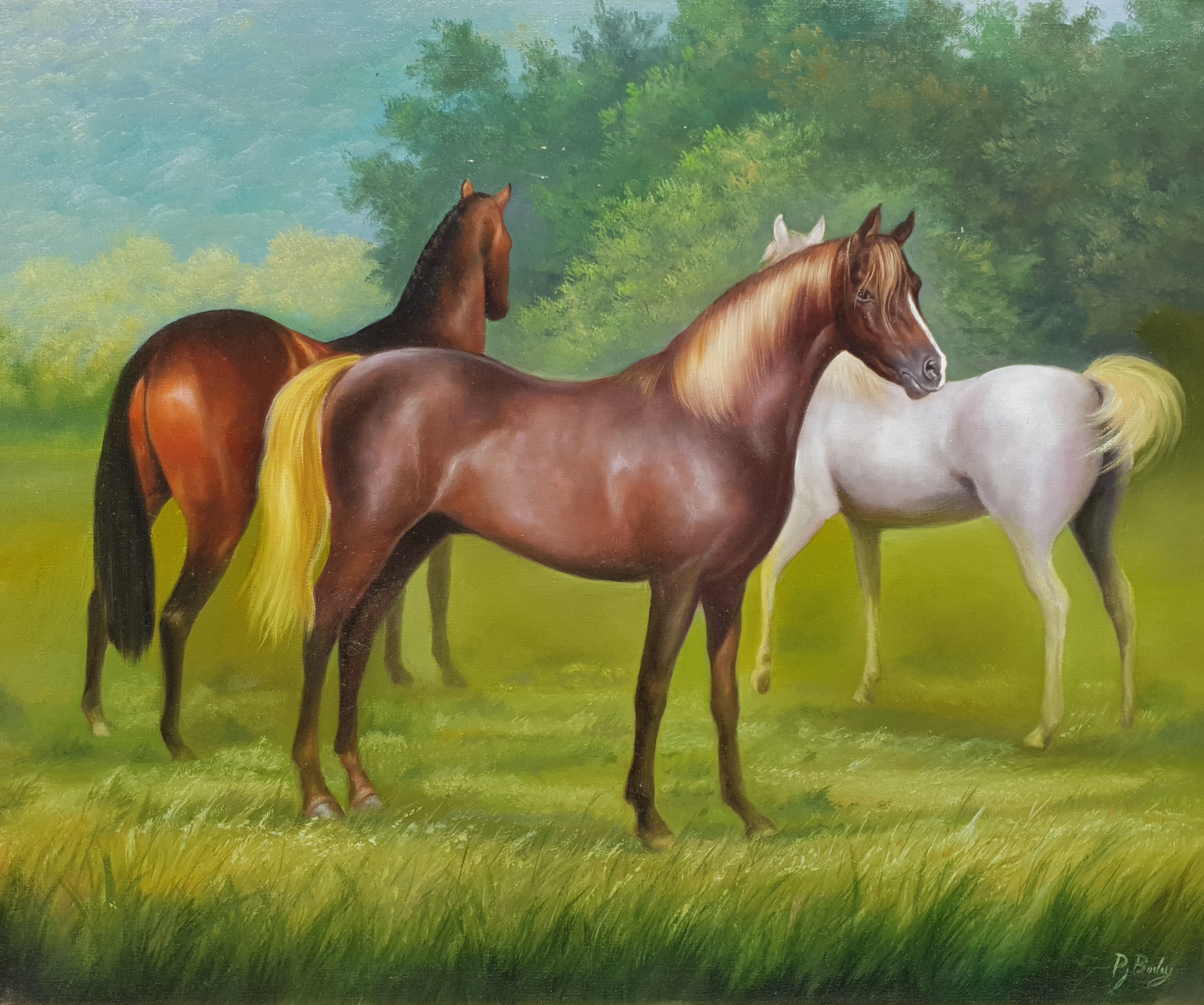 Peter J Bailey (British 1951-): 'Malvern Arabians', oil on canvas signed, titled signed and dated '0