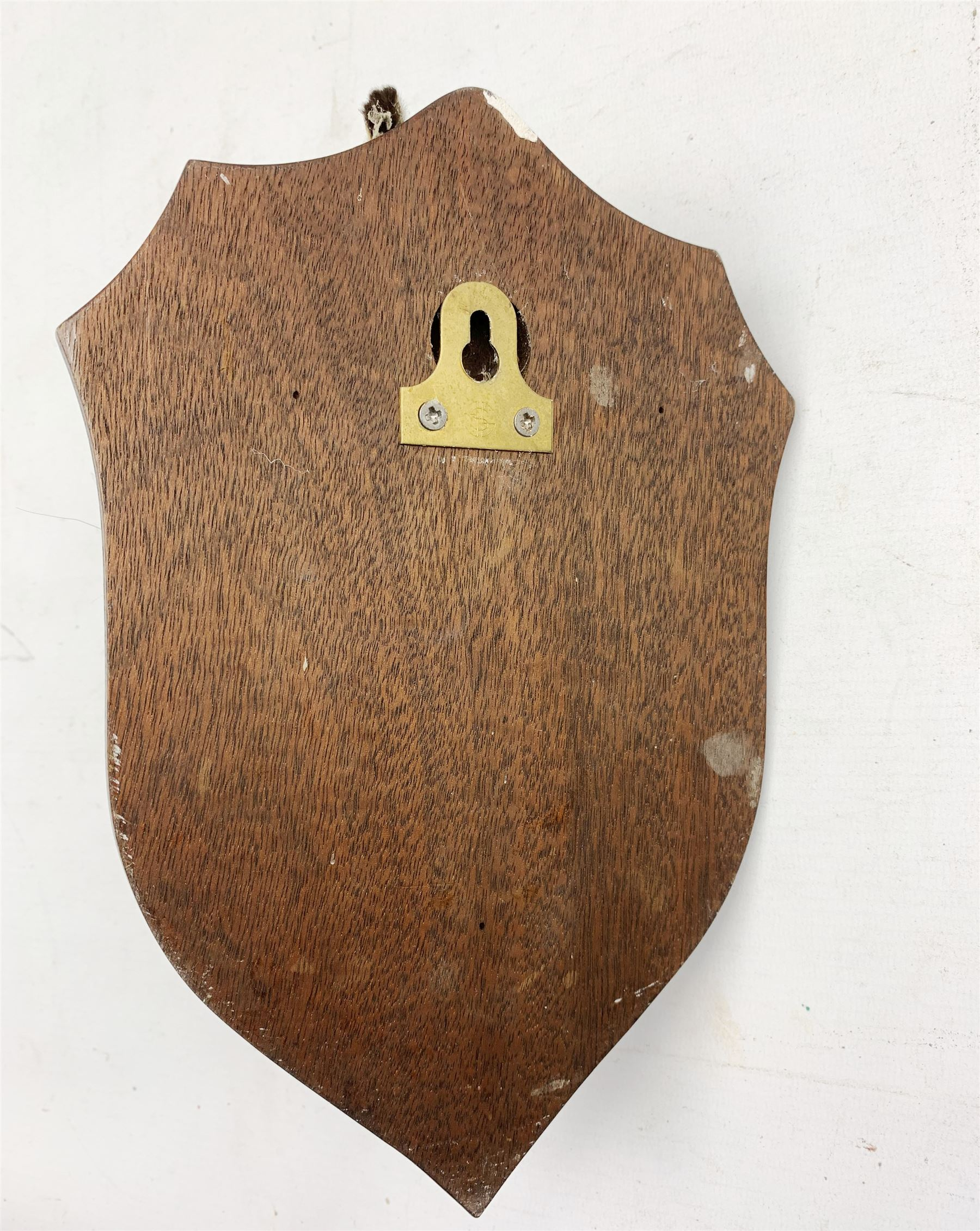 Taxidermy: Hare mask mounted on oak shield - Image 2 of 2