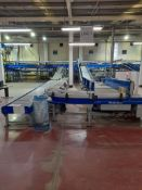 Unloading and data catchment: Line 3 - Approx 12 various conveyors, belt & roller, straight, angled,