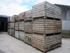 Twenty various potato boxes - to include contents of soil, as lotted (Please Note: Purchaser will be