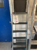 A 6 tread 'A' frame step ladder