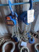Two Lifting Gear 3000Kg chain blocks. *N.B. This lot has no record of Thorough Examination. The