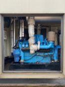 MTU 16V 1000KVA Containerised Diesel Generator
