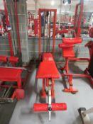 Panatta Sport Reverse Hyper Exercise Machine