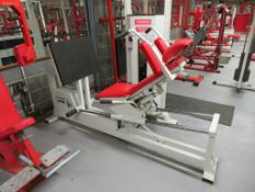 Panatta Fit 2000 Line Quad Exercise Machine