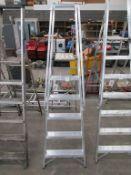 EN131 Professional Class 5 Tread Platform Step Ladder