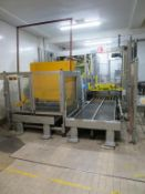Mariana Palletiser for Standard and Euro Pallets inc 2 Lengths of Infeed Roller Conveyor 1.7 x 1m Lo