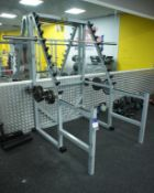 Technogym Squat Station with 2 bars and weights