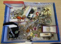 Amber Pendant, Jade Pendants, Silver Chains, Art Deco Paste Brooches, Boucherer Brooch, Freshwater P