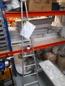 Access Platform & Single Section Window Cleaning Ladder
