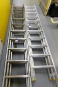 2x Various Height Triple Extension Ladders (Fully