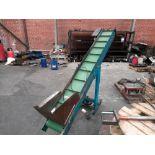 Inclined Powered Conveyor, 415V