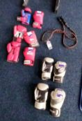 5 x various Boxing Gloves and Skipping Rope