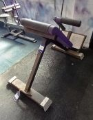Energie for Life Lower Back Extension Station