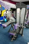 Energie for Life Rack Weighted Tricep Extension Machine