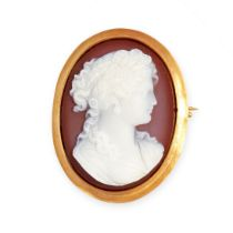 AN ANTIQUE HARDSTONE CAMEO BROOCH, LATE 19TH CENTURY in yellow gold, the oval body set with a