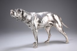 A LARGE GERMAN SILVER MODEL OF A WEIMARANER, 20TH CENTURY, lacking maker's mark, the dog modelled