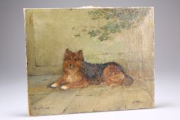"""FREDERICK FRENCH (FL. 1883-1916), """"CLYDE"""", STUDY OF A SHELTIE"""