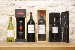 5 BOTTLES INCLUDING 3 MAGNUMS MIXED LOT OF EXCELLENT AND INTERESTING WINES TO INCLUDE PENFOLDS BIN 3