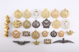 TWENTY-FOUR BADGES AND SIX BUTTONS OF BRITISH ALLIED AIR FORCES