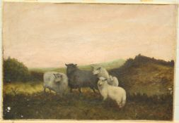 C*** GLOVER (19TH/20TH CENTURY), FIVE SHEEP GATHERED ON A MOOR