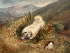 CIRCLE OF GEORGE ARMFIELD (1808-1893), TERRIER PURSUING A RABBIT