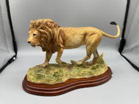 Border Fine Art Boxed A5047 Lion 2005