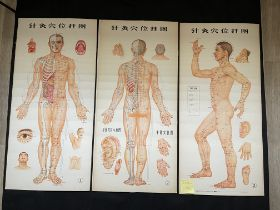 Three Chinese acupuncture posters, H 107 cm x W57c