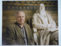 A signed 10x8 colour photograph - DAVID ATTENBOROUGH - this has been independently checked and