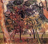 Van Gogh - Study Of Pine Trees
