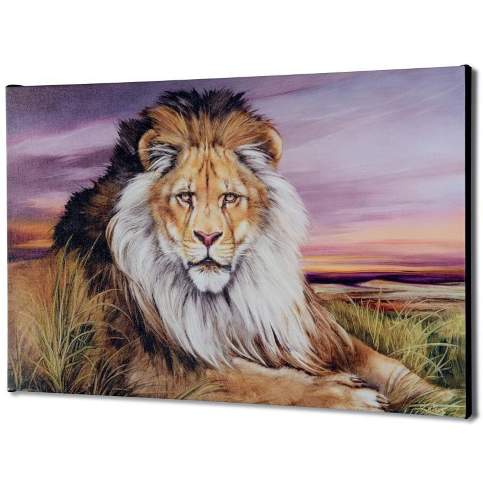 """""""African Lion"""" Limited Edition Giclee on Canvas by Martin Katon, Numbered and Ha - Image 2 of 2"""