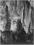 Adams - Carlsbad Caverns National Park New Mexico 4