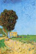 Van Gogh - A Lane Near Arles