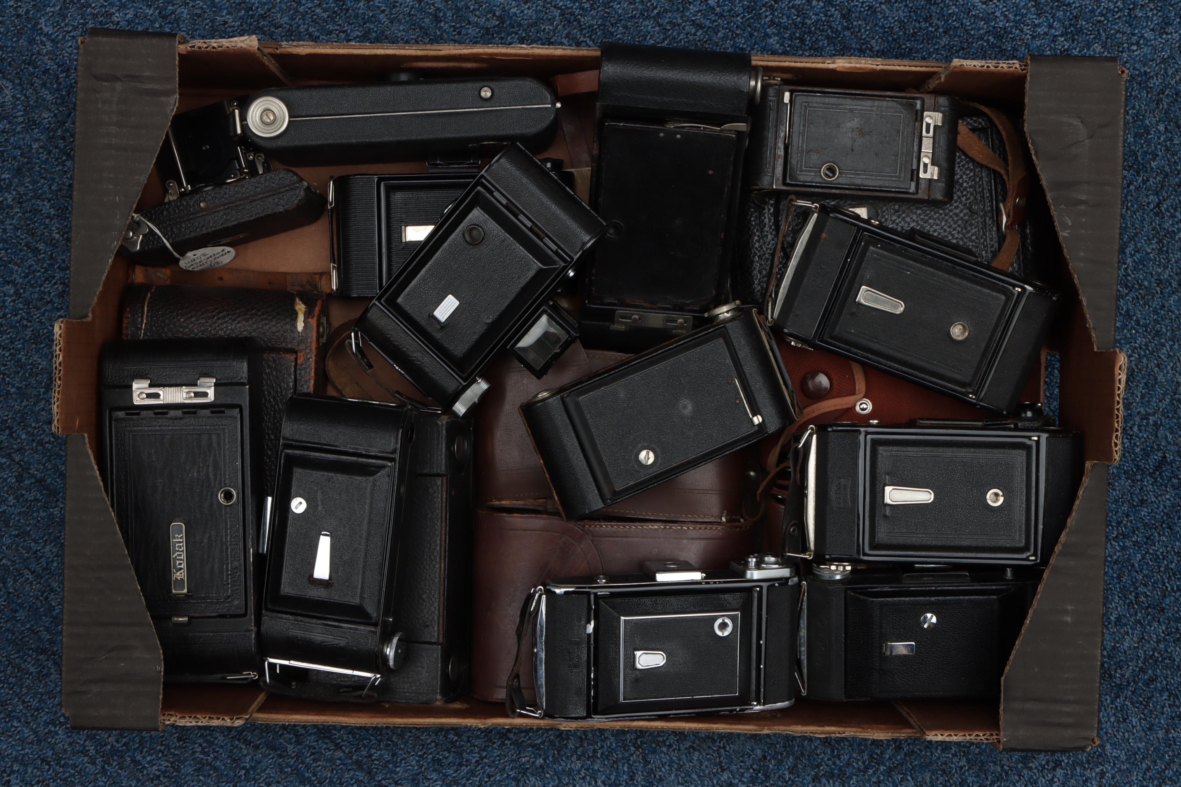 A Good Selection of Various Folding Cameras,