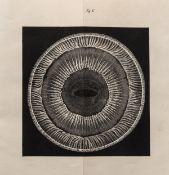 Whale's eyes.- Mayer (Dr. A.) Anatomische Untersuchungen über das. Auge der Cetaceen, Bonn, Henry …