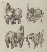 Ponzi (Giuseppe) Anatomia Artistica del Cavallo, Rome, 1841.