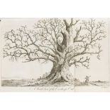 Trees & Forestry.- Evelyn (John) Silva, 2 vol., fourth edition, York, 1812 & others on trees (5)