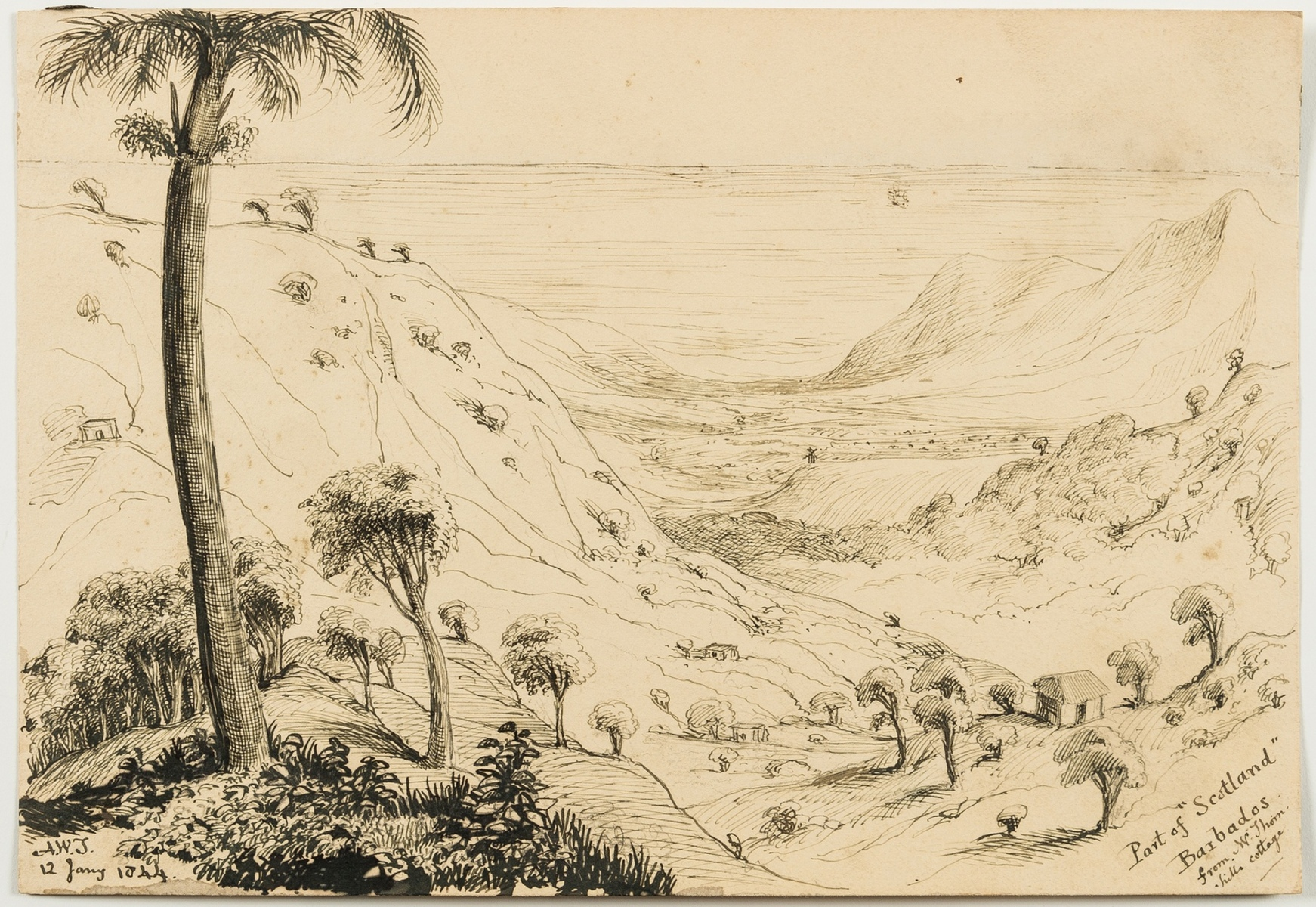 West Indies.- Barbados & Saint Lucia.- Torrens (Sir Arthur Wellesley) An important collection of … - Image 3 of 10