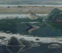 John Busby, RSA, RSW, PSSA, SWA (1928 - 2015) Young Grey Plover & Reflections, 1991, Watercolour,