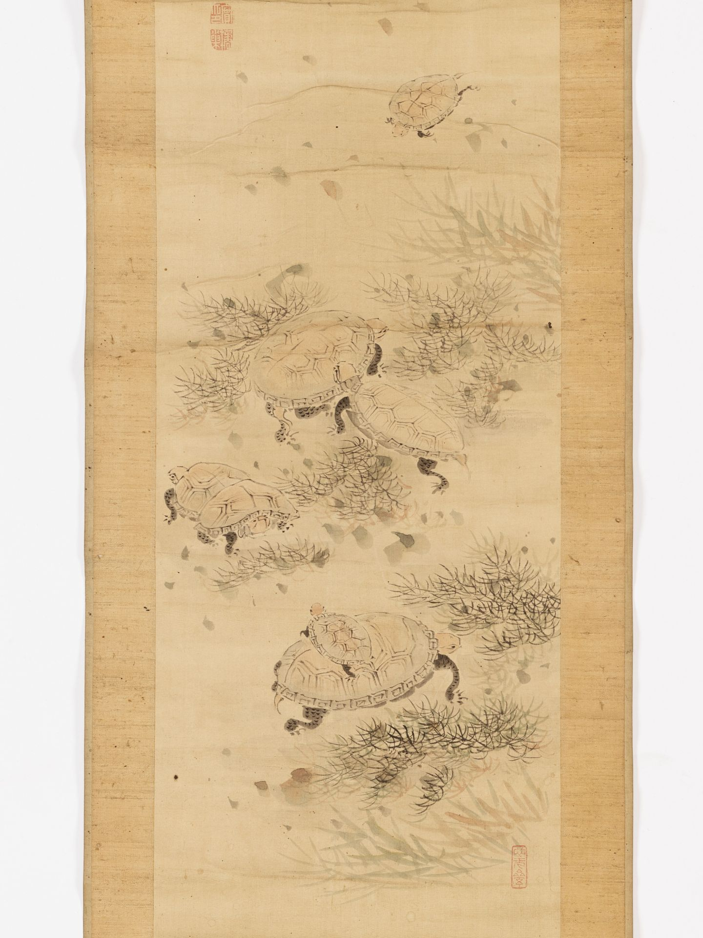 KISSO: A SCROLL PAINTING OF TURTLES