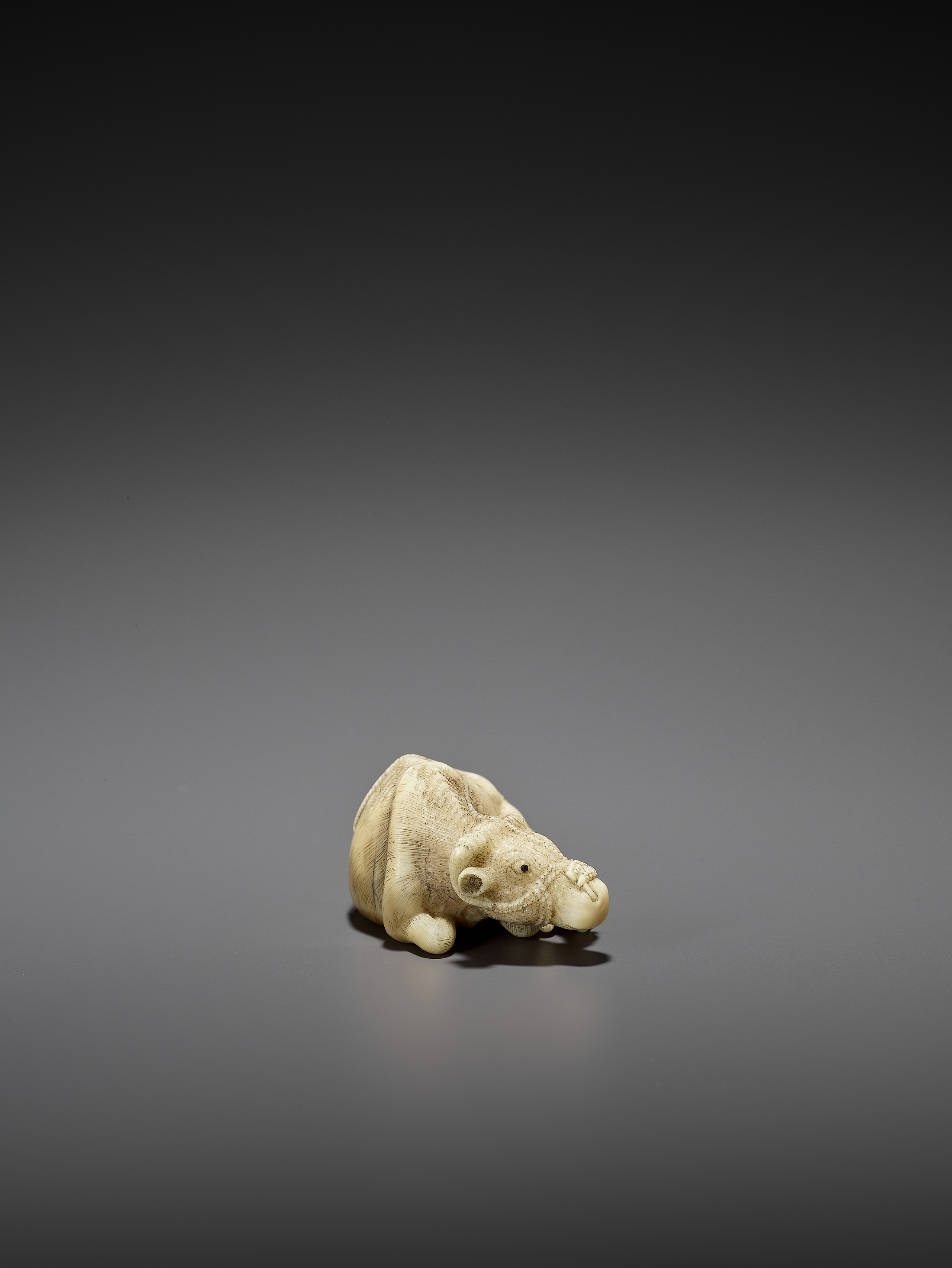 MITSUCHIKA: A LARGE AND RARE WALRUS IVORY NETSUKE OF A RECUMBENT COW WITH CALF - Image 2 of 3