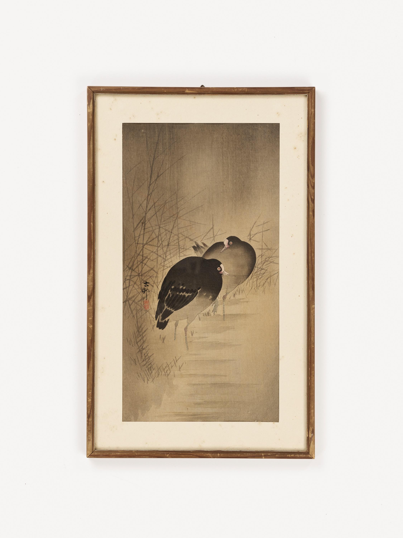 OHARA KOSON: A COLOR WOODBLOCK PRINT OF TWO MOORHENS - Image 4 of 6