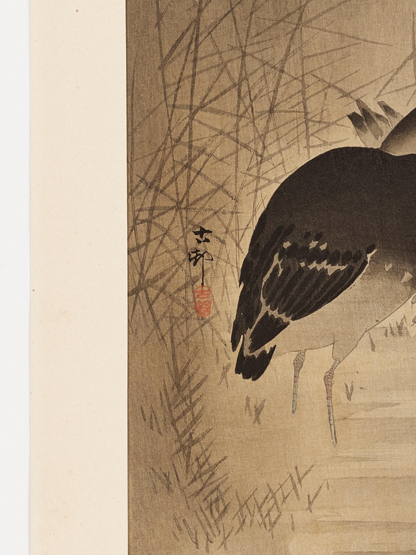 OHARA KOSON: A COLOR WOODBLOCK PRINT OF TWO MOORHENS - Image 3 of 6
